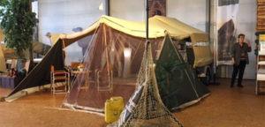 Aart Kok Zambezi River Lodge Classic in Roden